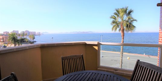 Spacious apartment with beautiful views in Playa Príncipe